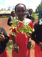 Trees for life, Kenya – photo © Bettys and Taylors Group